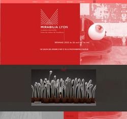 mirabilia lyon site.jpg