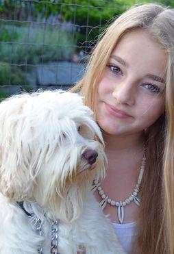 Familienhunde, Australian, Labradoodles Schweiz, Cobberdog, Jollitys, nichthaarender Hund, Welpen Australian Labradoodle, Zuchtrüden