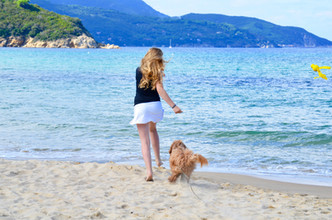 Spiaggia di Biodola Chiara mit Australian Labradoodle