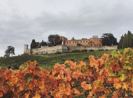 Il Castello Ricasoli (SI)