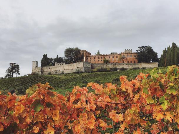 Castello Ricasoli (SI)