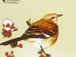 """Nelle Harper Lee, La """"luce"""" oltre la siepe"""