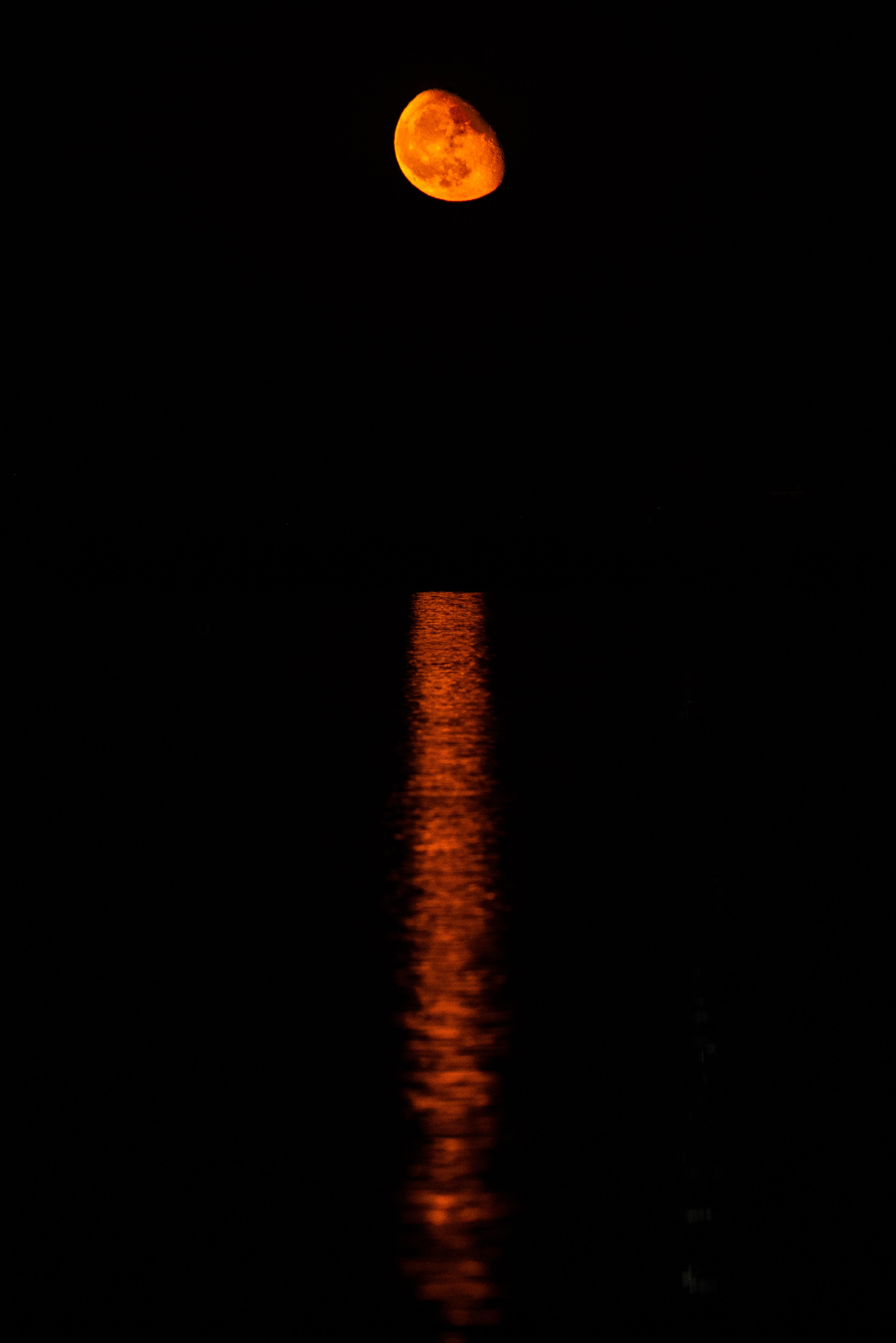 Orange Waning Moon, 2020