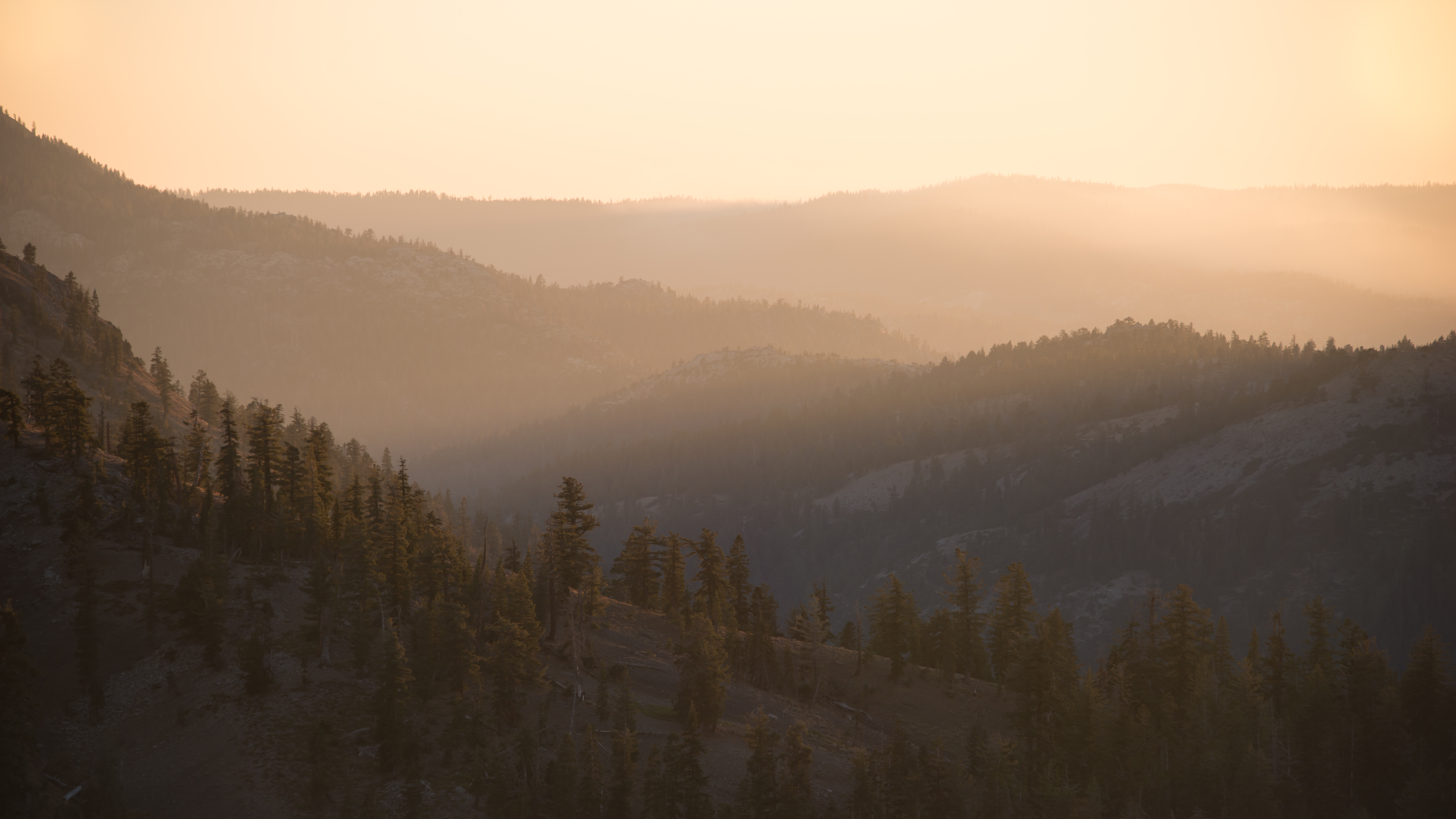Highland Creek Canyon, 2018