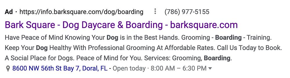 google for dog daycare