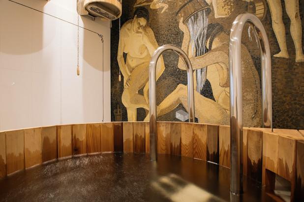 Private banya dipping pool