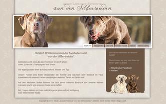 professionelle Homepage | Silver Labrador von den Silberweiden