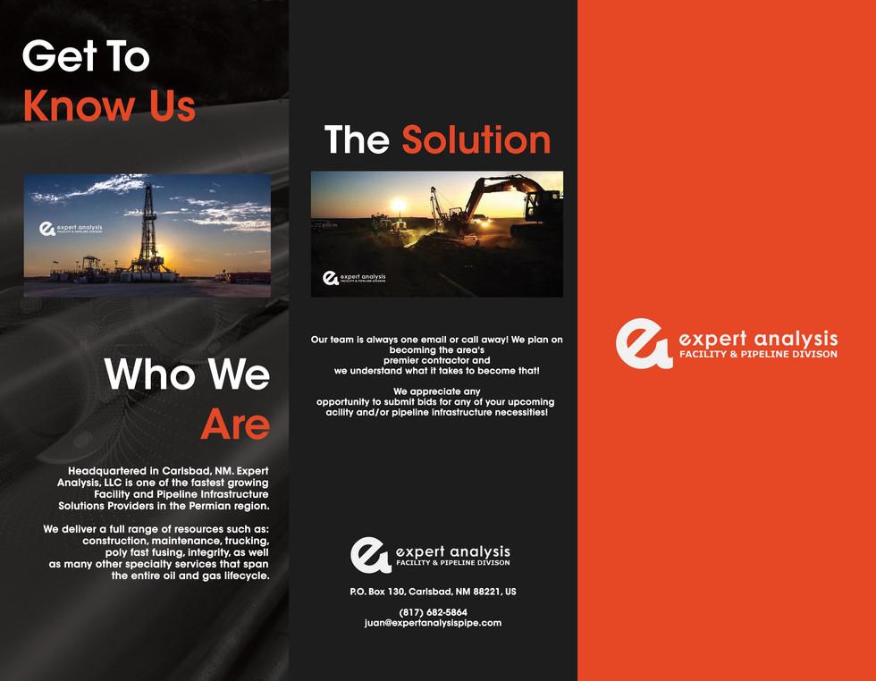 Expert Analysis Brochure Design