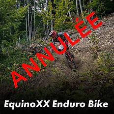 EquinoXX Enduro Biketitre_annulee.jpg