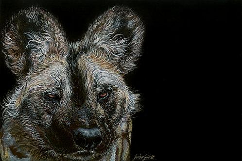 African Wild Dog Print