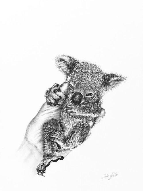 'Helping hand' Koala Print - Limited edition