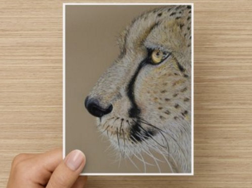 Cheetah gift card