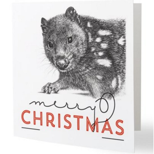Spotted-tailed Quoll christmas card