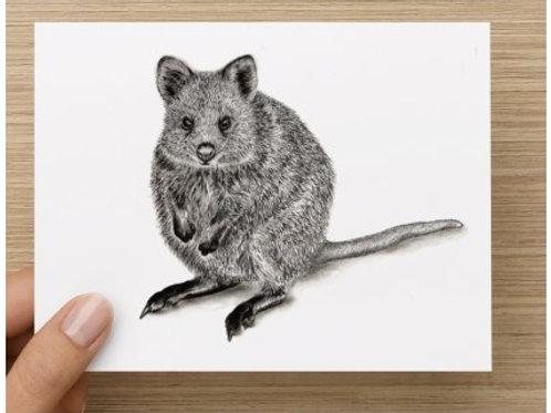 Quokka gift card