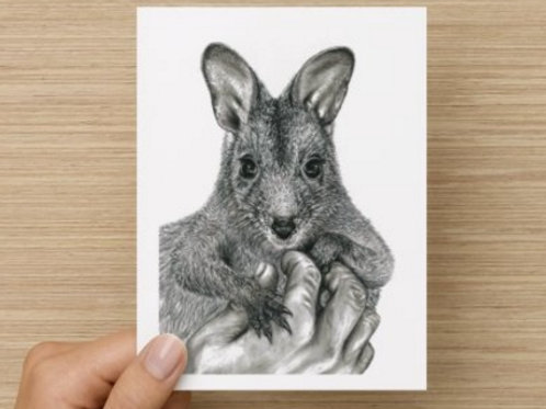 Wallaby Gift Card