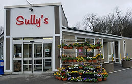 SULLY'S 2.jpg