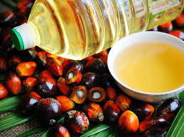 What are palm oils?