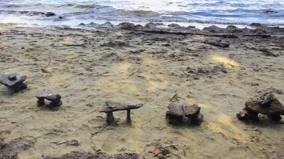 Adam's Beach, Minjerribah