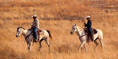 Horse Riders.jpg