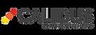 calidus logo.png