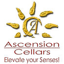 ascensionlogo.jpg