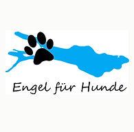 EngelfürHunde1.jpg