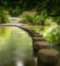 Stepping stones_edited.jpg
