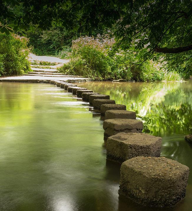 Stepping stones_edited.jpg