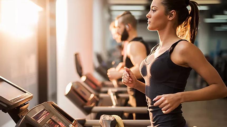 FIT Concept SPA - Salle de Fitness