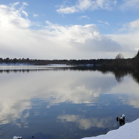 Icy Calm