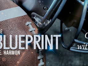 GUEST POST with EXCERPT and REVIEW: S.E. Harmon of 'The Blueprint'
