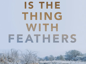 REVIEW: 'Hope Is the Thing with Feathers' by Brandon Witt
