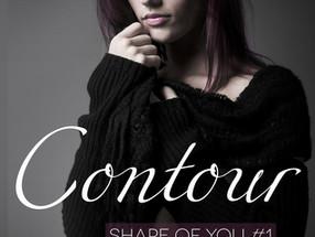 REVIEW: 'Contour' by Meg Harding