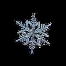 snowflake%203_edited.png