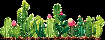 cactus1-05.png