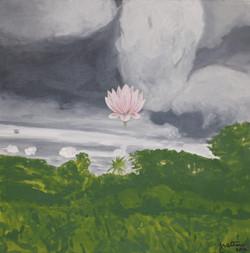Lotus de la mousson
