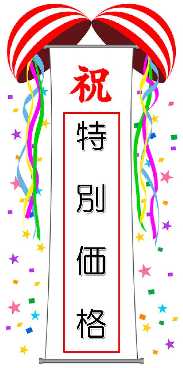 垂れ幕/特別価格.jpg