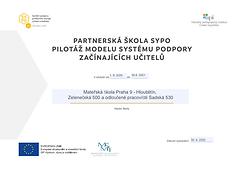 MS - Projekt.PNG