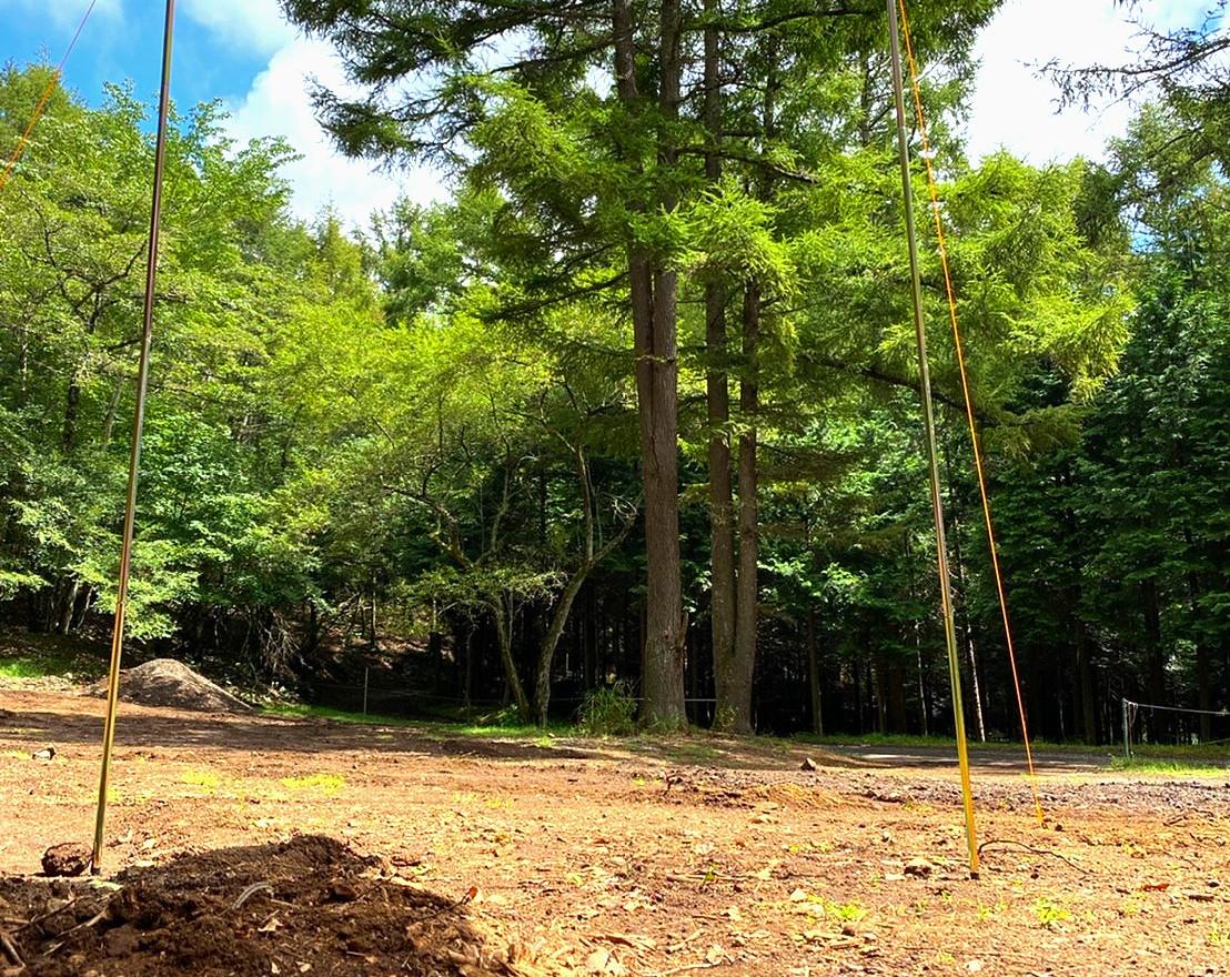 Woods site