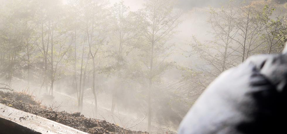 丘サイト:幻想的な景色を堪能あれ