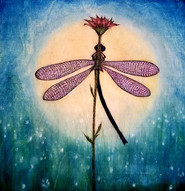 Moonlight Dance Dragonfly
