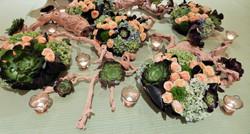 Banquet Table Succulent Centerpiece