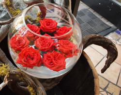 Rose Bowl Spider (2)