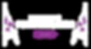 PNG NZAPP logo - Horizontal - WHITE.png