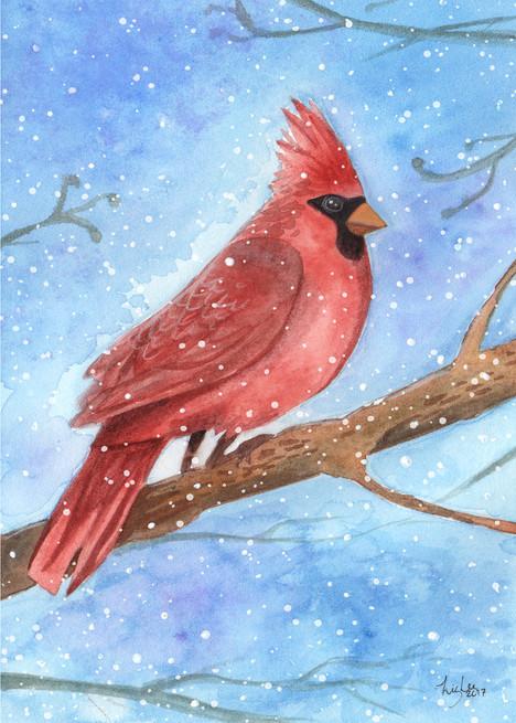 cardinalcard.jpg