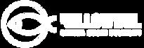 logo-MOD-white copy.png