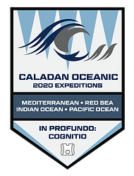 Caladan 2020 Expeditions