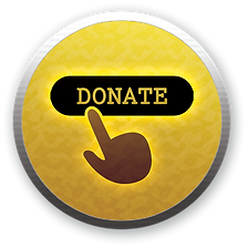 donate-now-icon.png