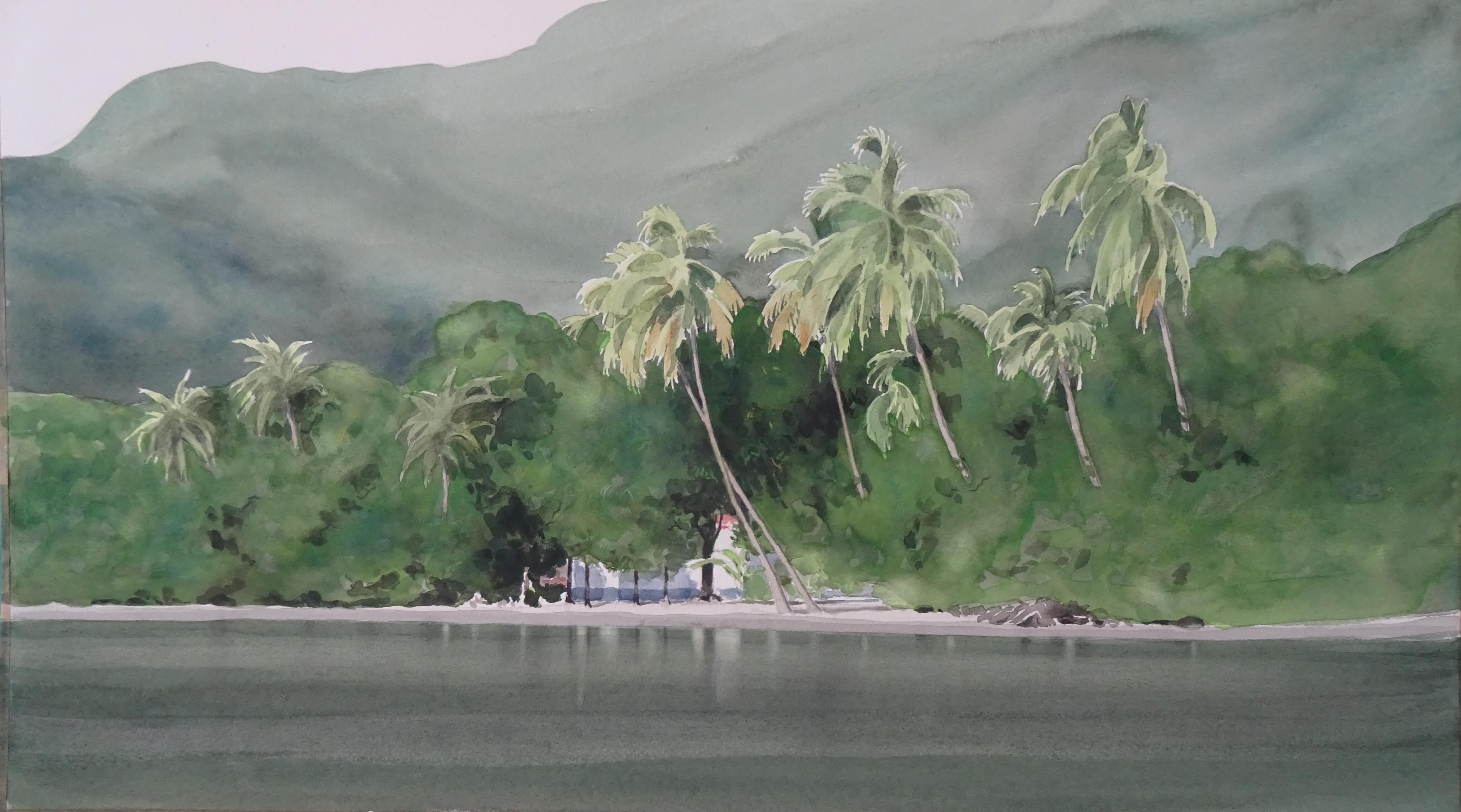 GuadeloupeBasseTerre60x34cm