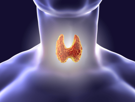 Hashimoto's Disease and Thyroid Disease; Why it Matters and What to Do About It!